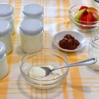www.casafacilefelice.org, yogurt magro fatto in casa,yoghurt homemade