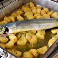 coryphaena hippurus,lampuga,lampuga al forno con patate,baked lampuga with potatoes