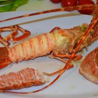 aragosta,langosta,lobster